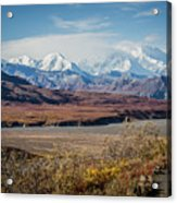 Mt Denali View From Eielson Visitor Center Acrylic Print