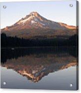 Mt Hood Acrylic Print