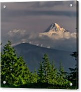 Mt Hood From Grassy Knoll Acrylic Print