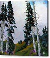 Mt. Rainier 3 Acrylic Print