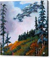 Mt. Rainier 4 Acrylic Print