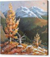 Mt. Rainier 5 Acrylic Print
