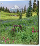 Mt Rainier Meadow Flowers Acrylic Print