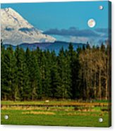 Mt Rainier Moonrise,wa Acrylic Print