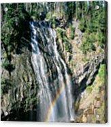 Mt. Rainier National Park Acrylic Print