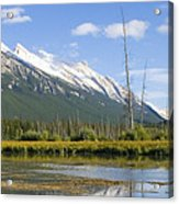Mt Rundle Over Vermillion Lakes Acrylic Print
