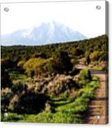 Mt. Sopris - A Colorado Landscape Acrylic Print