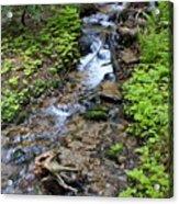 Mt. Spokane Creek 2 Acrylic Print