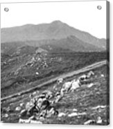 Mt Tam From The Tiburon Hills 1975 Acrylic Print
