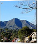 Mt Tamalpais View From Mill Valley Acrylic Print