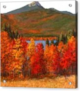 Mt.chocorua Acrylic Print by Jack Skinner