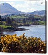 Muckish ,irish Landscape  Acrylic Print
