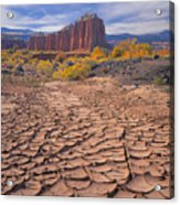 212648-mud Cracks Upper Cathedral Valley  Acrylic Print
