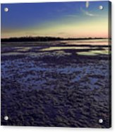 Muddy Beach Acrylic Print