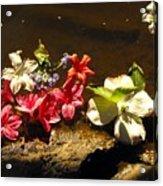 Muddy Flowers  Acrylic Print