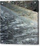 Mudflats Frozen Acrylic Print