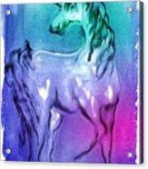 Multi Coloured Unicorn Acrylic Print