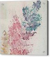 Multicolour Fern Acrylic Print