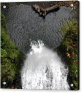 Multnomah Falls - 4 Acrylic Print