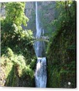 Multnomah Falls Acrylic Print