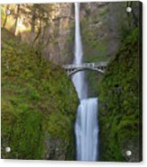 Multnomah Falls In Oregon State. Acrylic Print