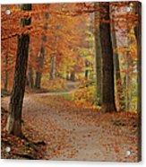 Munich Foliage Acrylic Print by Frenzypic By Chris Hoefer