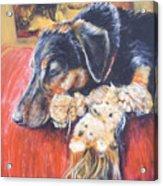 Murphy Viii Acrylic Print