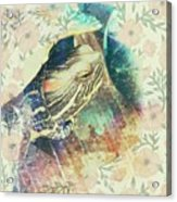 Murtle Grunge Acrylic Print