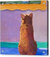Museum Cat 2 Acrylic Print