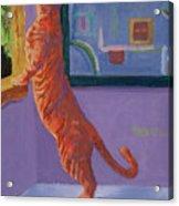 Museum Cat Acrylic Print