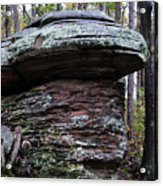 Mushroom Rock Acrylic Print