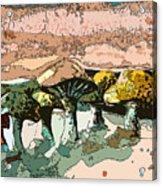 Mushroom Rows Acrylic Print
