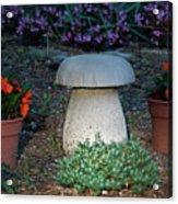 Mushroom Stool Acrylic Print