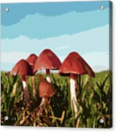 Mushrooms In Autumn Acrylic Print