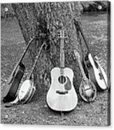 Musical Instruments Acrylic Print