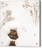 Muskoka Winter 2 Acrylic Print