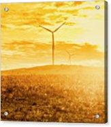 Musselroe Wind Farm Acrylic Print