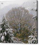 Mussoorie Winter 1 Acrylic Print