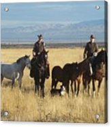 Mustang 'n' Cowboys Acrylic Print
