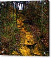 Mustard Hill Acrylic Print