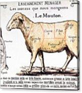 Mutton Acrylic Print by French School