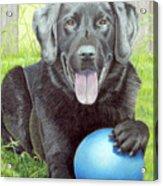 My Big Blue Ball Acrylic Print