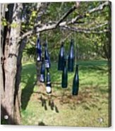 My Bottle Tree - Photograph Acrylic Print