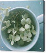 My Cup Runneth Over Acrylic Print