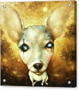 My Doggy Dog Acrylic Print