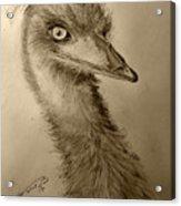 My Friend Emu Acrylic Print