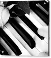 My Piano Acrylic Print