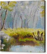 My Pond Acrylic Print
