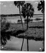 Myakka River Reflections Acrylic Print