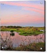 Myakka Wetlands By H H Photography Of Florida Acrylic Print